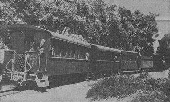 An engine pulling a short train of three passenger coaches through leafy Walmer