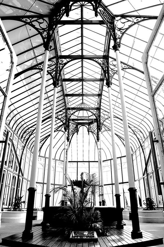 Pearson Conservatory in decay despite upgrade - The Casual Observer